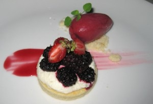Fromage blanc tart, with raspberry puree and Madagascar vanilla bean gelato
