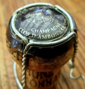 img 3538 1 287x300 Clos dAmbonnay cork and capsule with cage