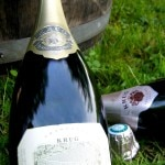 Champagne picnic at the Clos du Mesnil vineyard