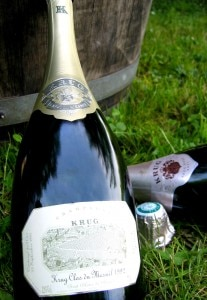 img 5206 1 207x300 Champagne picnic at the Clos du Mesnil vineyard