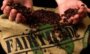 Fair trade coffee has become a common sight for the American consumer