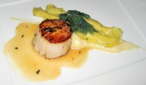 scallopa 300x175 Maine diver sea scallops with hand rolled pasta, sunchoke purée, cardoons and truffle butter sauce