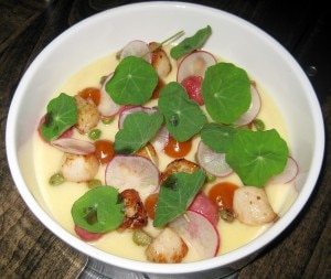 bay scallops 300x253 Blue Lantern Bay scallops, braised radishes, beurre blanc, fish sauce, sea buckthorn and nasturtium