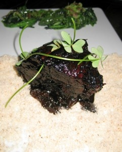 Pork with caramelized black vinegar and honey, prunes, sorrel and dried almond