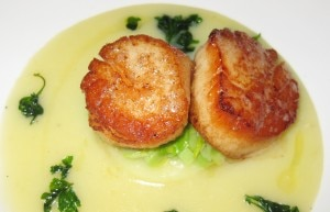 sauteed scallops 300x193 Sautéed Maine scallops with Yukon gold potatoes, diced leeks and smoked potato leek chowder