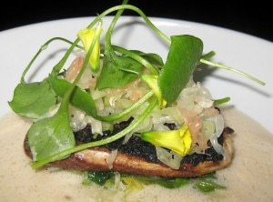 wild striped bass 300x222 Wild striped bass with brown butter soy milk, verbena, pomelo and lettuce stems