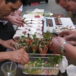 Chef Michael Voltaggio and team plating