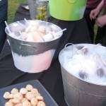 florentino artisan ice cream 150x150 Tasting At Sunset
