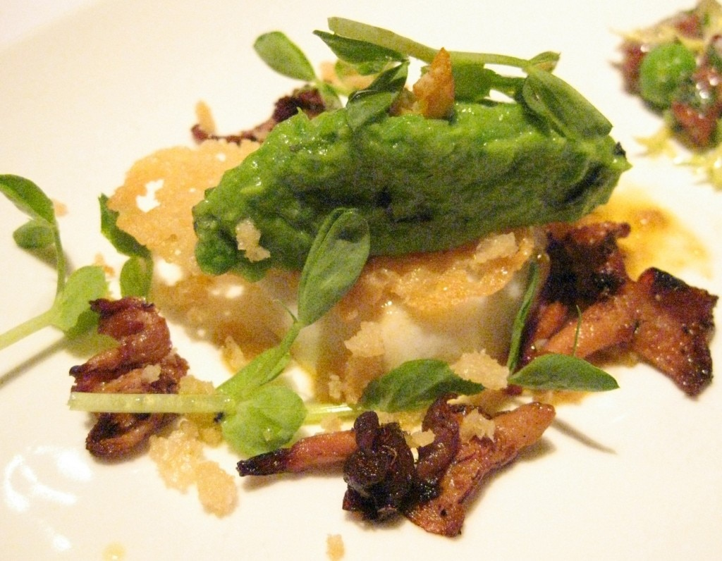 Burrata & English peas: creamy mozzarella burrata with crushed English peas, caramelized wild mushrooms and crispy parmigiano vinaigrette