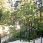 garden 150x150 Hotel Bel Air Reopens With Great Luxury