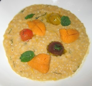 sea urchin risotto 300x280 Sea urchin, cous cous and lemon