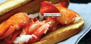 lobster roll 300x147 Maine lobster roll