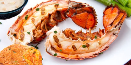 Maine lobster tail feast