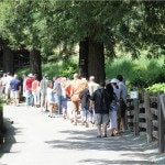 The line for A. Rafanelli Winery