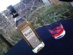 mariposa 300x225 Worlds First Agave Nectar Liqueur Launched