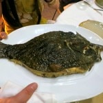 Whole grilled turbot