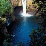 maui waterfall 150x150 Go Whale Watching in Maui with Kaanapali Beach Hotel   Travel Special
