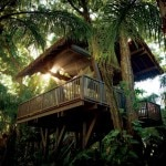 ritz dorado beach spatreeho 150x150 The Ritz Carlton Debuts Dorado Beach Luxury Hotel in Puerto Rico   Travel News