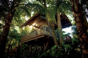 Dorado Beach, A Ritz-Carlton Reserve spa treehouse