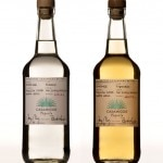 Casamigos Tequila comes in both Blanco and Reposado styles