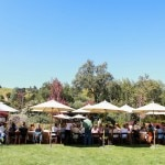 grape camp outdoor dining 150x150 Sonoma County Grape Camp