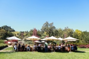 grape camp outdoor dining 300x199 grape camp outdoor dining