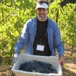 jeff hoyt grape bin 150x150 Sonoma County Grape Camp