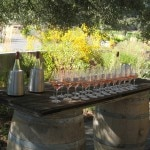 rose wine tasting 150x150 Sonoma County Grape Camp