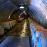 Wine caves and barrel storage cellar