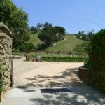 Entrance to Moraga Vineyards
