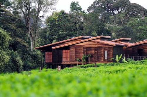 Exterior view of the Nyungwe Forest Lodge