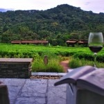 View from the outdoor patio at the Nyungwe Forest Lodge