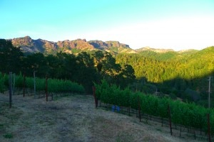 jericho canyon palisades 300x200 Jericho Canyon Vineyard and the Palisades