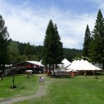 Tents await lunch and bidding at Auction Napa Valley 2013 at the Meadowood resort