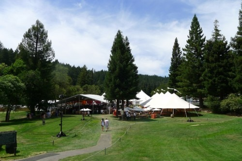 meadowood tents 500x333 Auction Napa Valley 2013