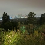 View from David Arquette's Garden