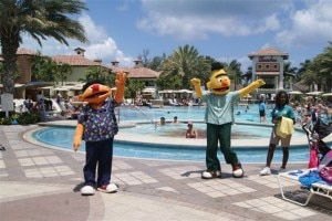 Bert and Ernie by the Beaches Turks and Caicos pool