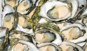 oysters 300x178 Oysters on the half shell