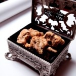 white truffle 150x150 Truffle Extraordinaire Part 1