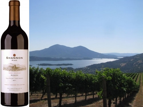 shannon ridge barbera Shannon Ridge 2011 Terre Vermielle Vineyard Barbera   Wine of the Week Review