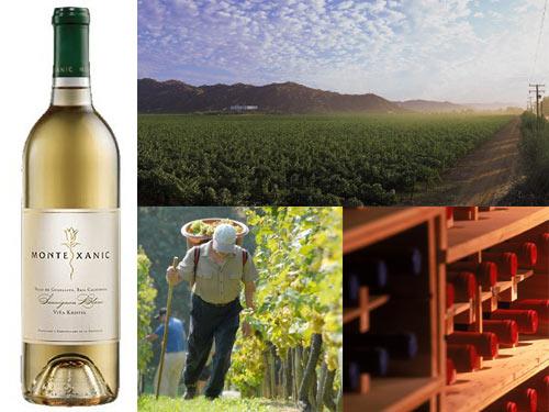 monte xanic sauvignon blanc Monte Xanic 2010 Viña Kristel Sauvignon Blanc