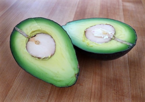 avocado halves 500x351 The Health Benefits of Avocados
