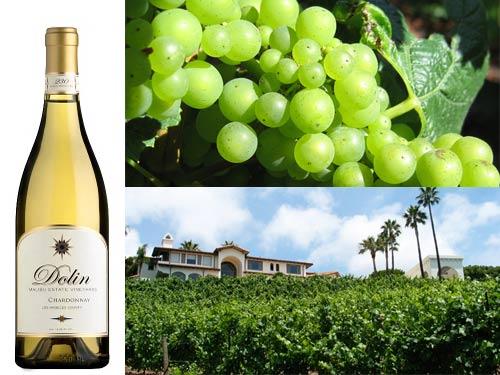 Dolin Malibu Estate Vineyards 2012 Chardonnay