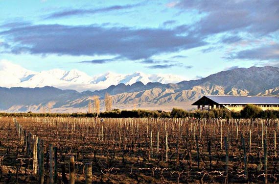 Uco Valley wines grow at the steps of the Andes