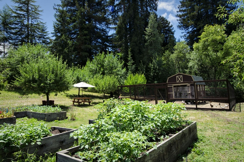 Napa valley gayot 39 s blog for The farm restaurant napa