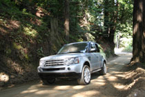 The Rover Sport humbled by redwoods