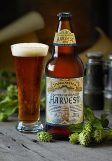 Sierra Nevada Southern Hemisphere Harvest, one of GAYOT's Top 10 Spring Beers