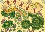 Brasserie Dupont Forêt, one of our Top 10 Sipping Beers