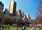 Central Park is New York City's very own green escape