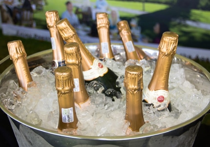 Chilled Champagne at The Magic of Bubbles event in Franschhoek, South Africa